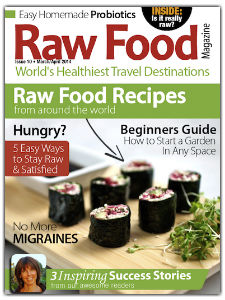 raw food magazine with raw food recipes