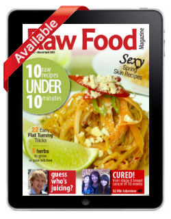 Raw Food Magazine Comfort Foods Issue