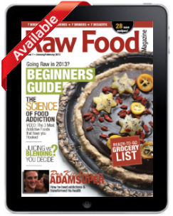 Raw Food Magazine Beginners Guide Issue