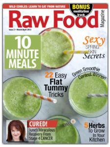 raw-food-magazine-green-smoothies-issue