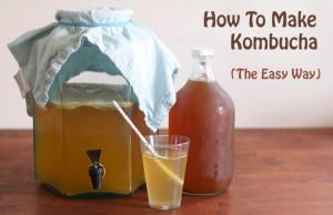 How-To-Make-Kombucha